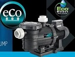 Variable Speed Pool Pump